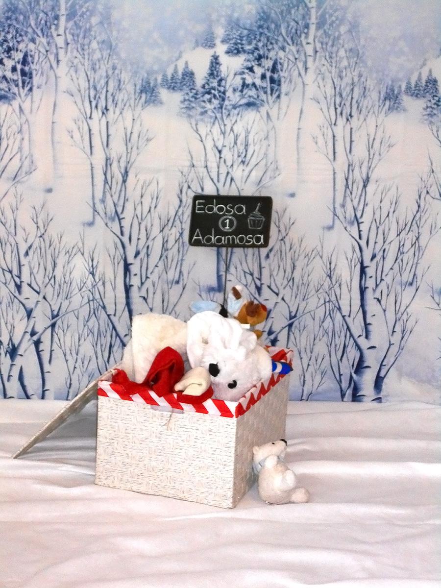 Winter Wonderland Birthday Party Sf Bay Area Wedding