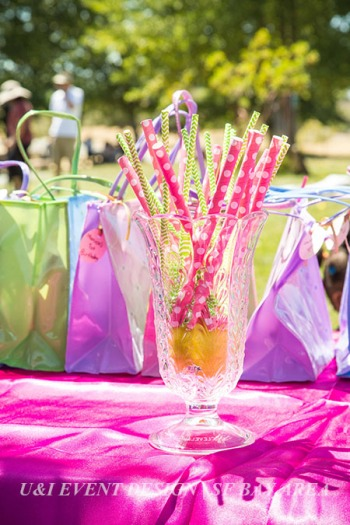 birthday party patterned paper straws_union city east bay park_event planner
