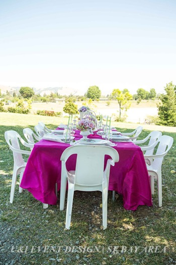 fremont california park_outdoor kids birthday idea