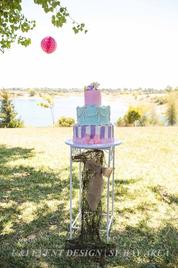 rustic vintage shabby chic kids cake_east bay park_outdoor birthday